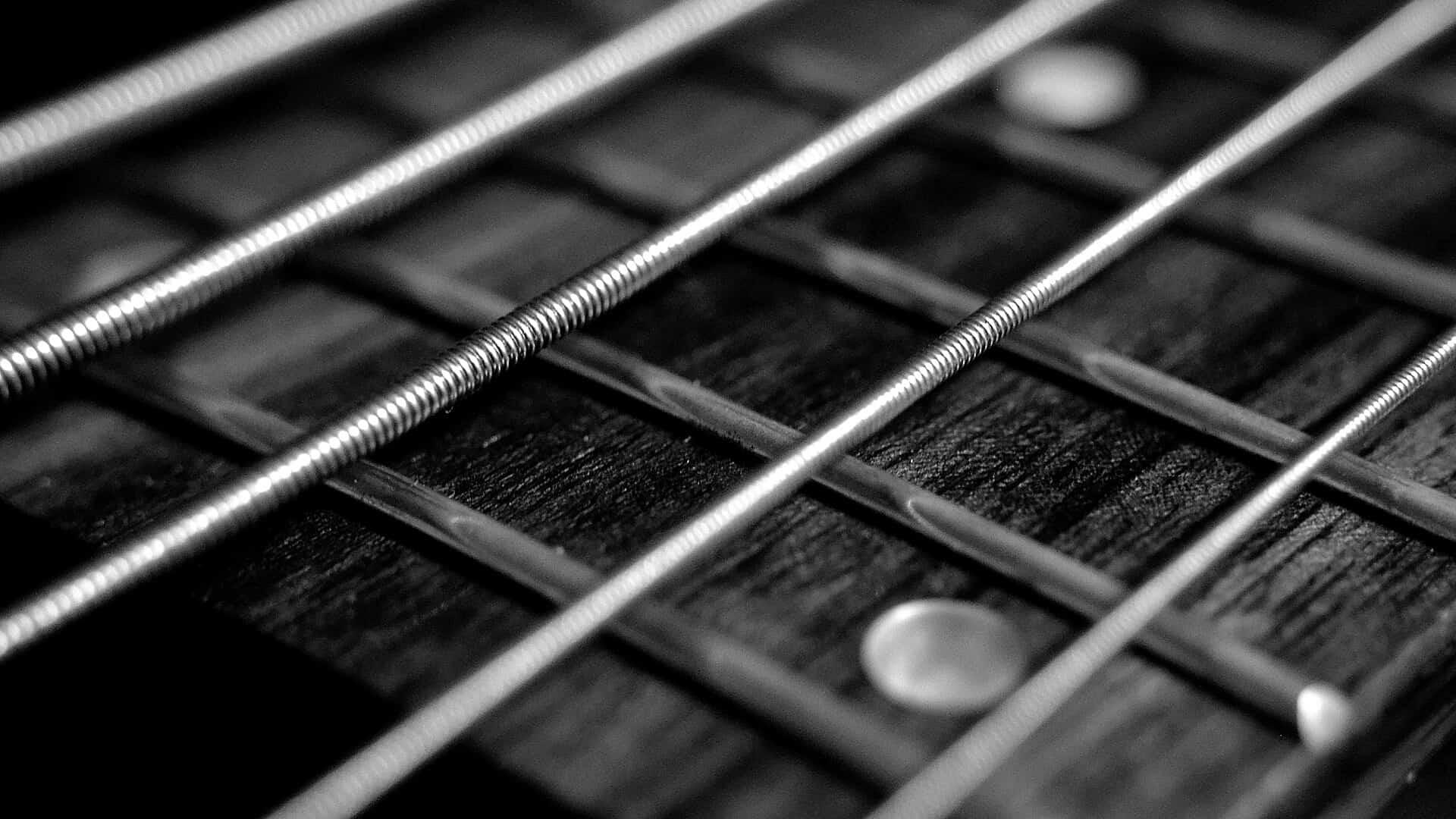 Best Acoustic Bass Strings